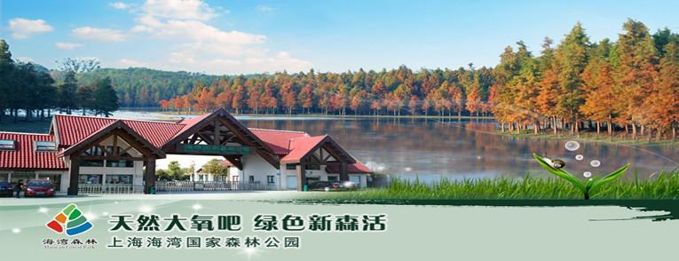 上海海湾森林公园